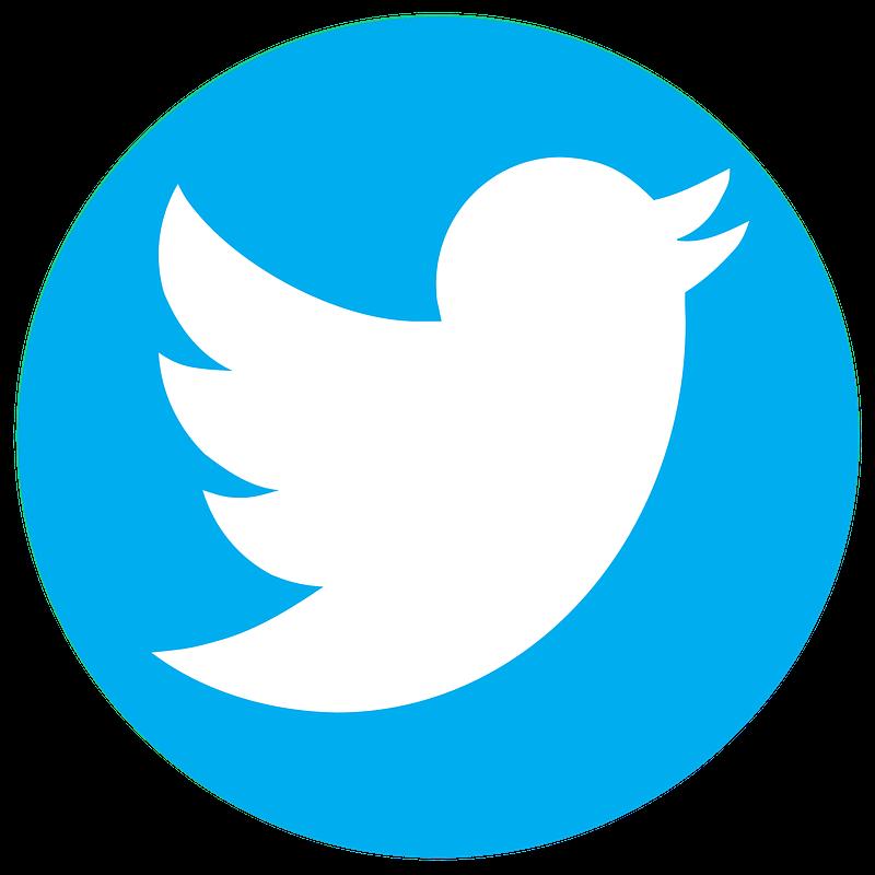 Twitter- Logo